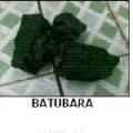 Batubara coal