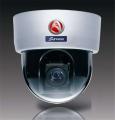 Dome Network Camera