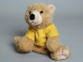 Cuddly Bear Toy