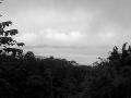 West Sumatra Highland Arabica