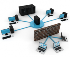 Server and network installation